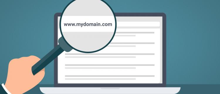 Searching for my domain using magnifying glass aimed at search bar.